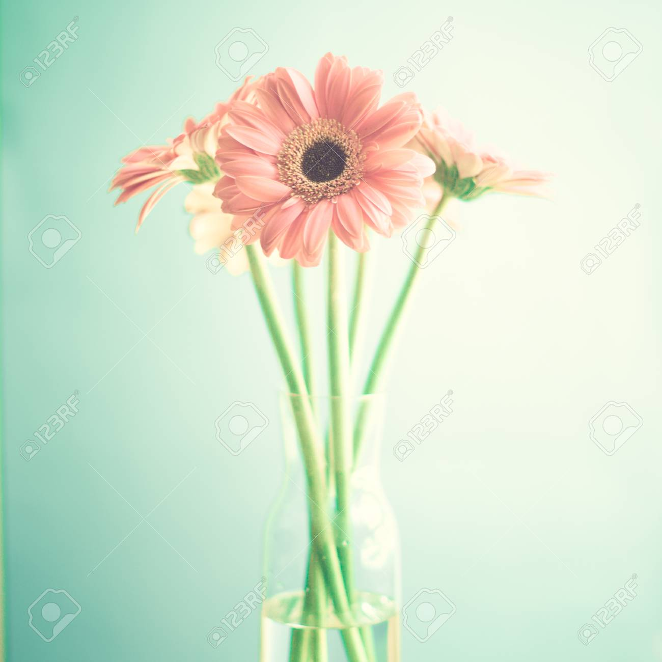 Vintage Pink Flowers Stock Photo Picture And Royalty Free Image