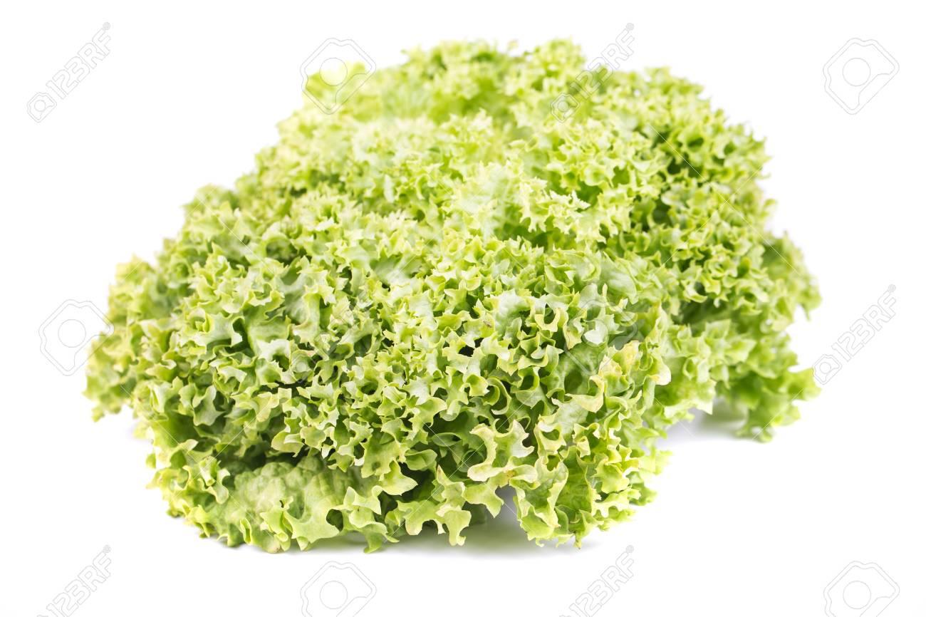 Fresh Lettuce salad on a white background Stock Photo - 18373303