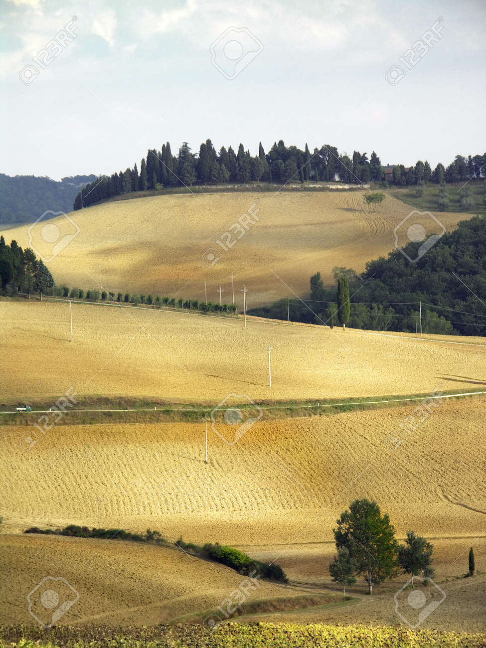 Country landscape in Tuscany, Italy Stock Photo - 274451