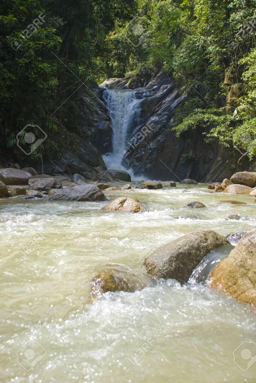 Tropical rainforest river Stock Photo - 3294451