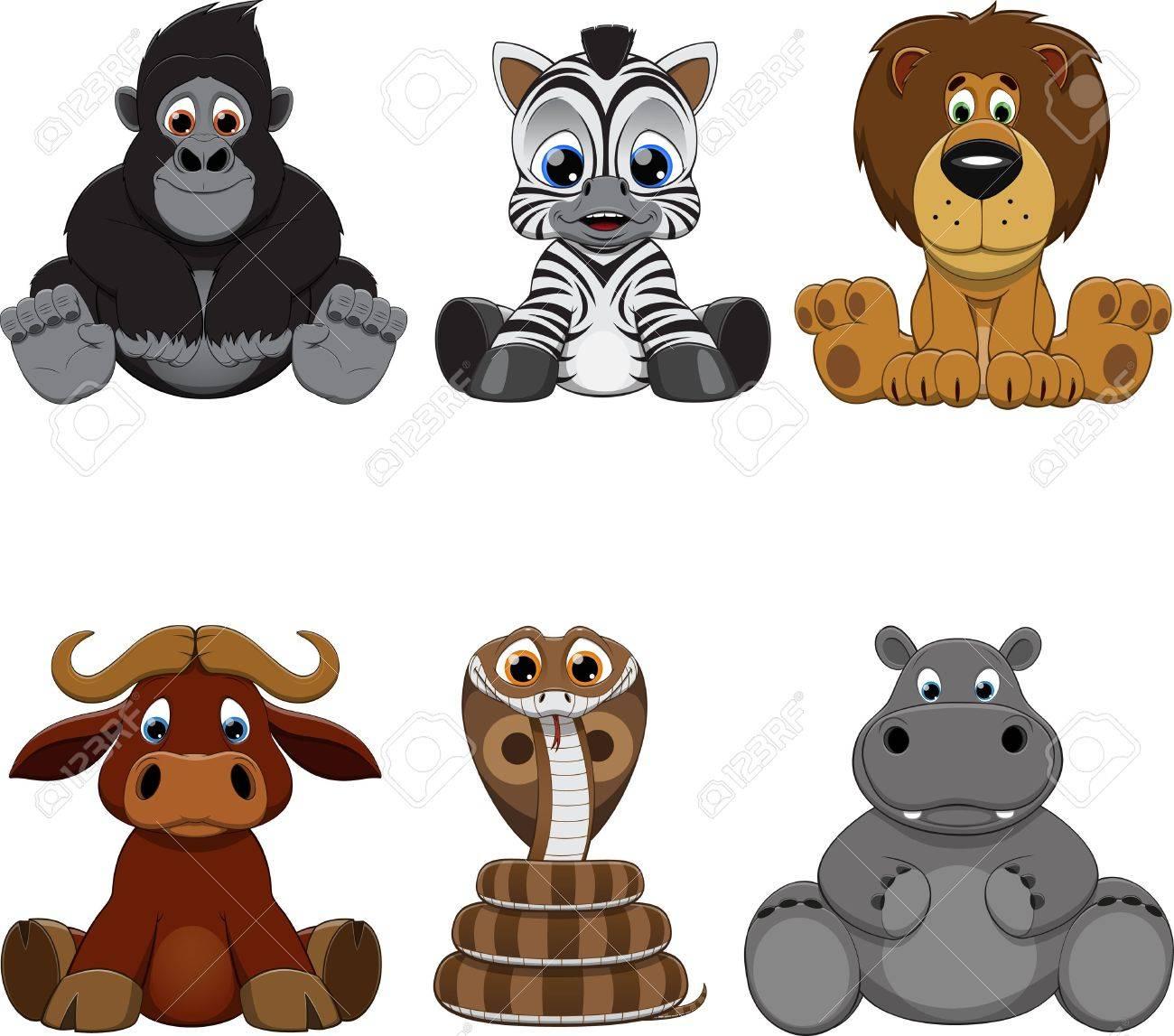 面白い 画像 動物