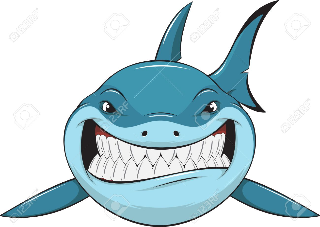vector illustration toothy white shark royalty free cliparts