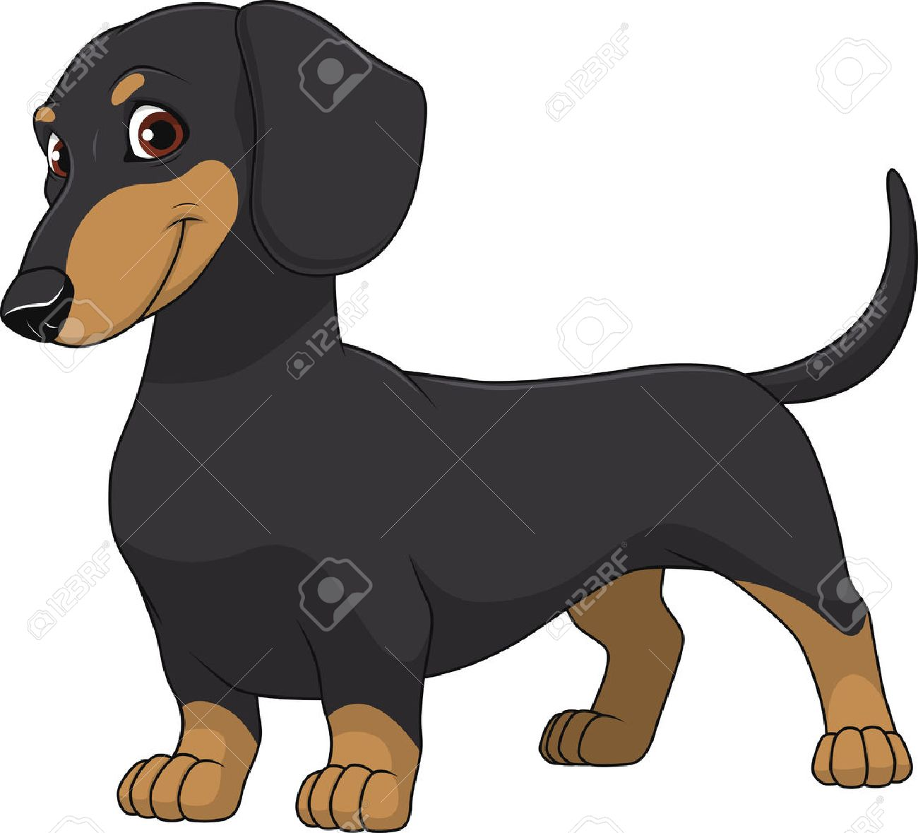 5 600 dachshund stock illustrations cliparts and royalty free rh 123rf com dachshund clipart black and white dachshund clipart pictures