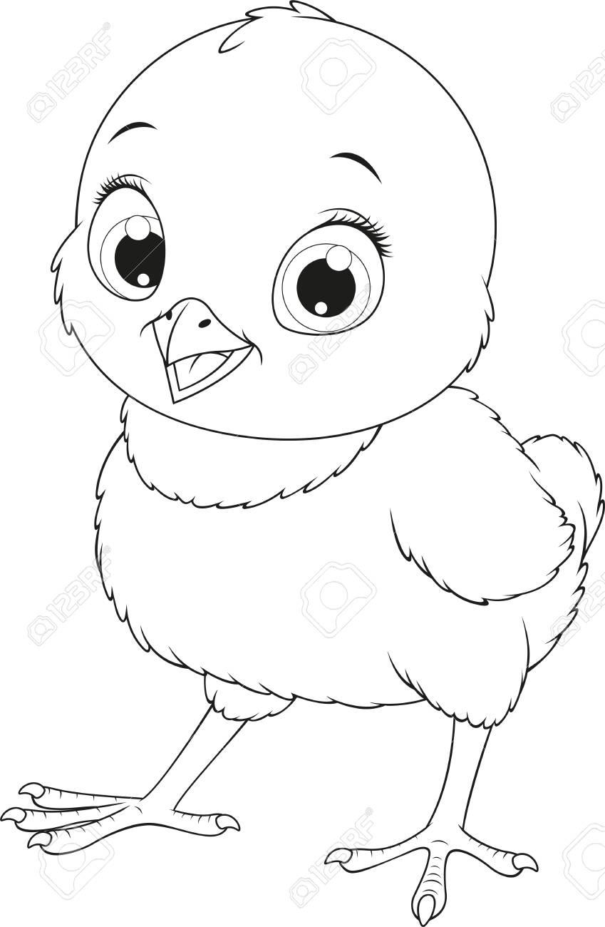 Ilustración Del Vector Pollo Divertido Del Bebé En Un Fondo Blanco Páginas Para Colorear