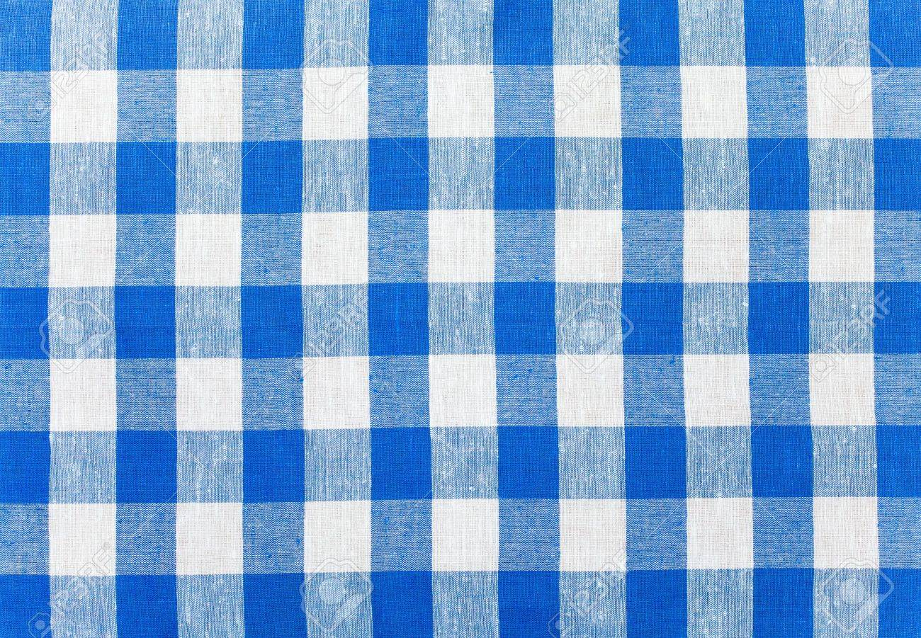 Etonnant Blue Checked Fabric Tablecloth Stock Photo   8195618