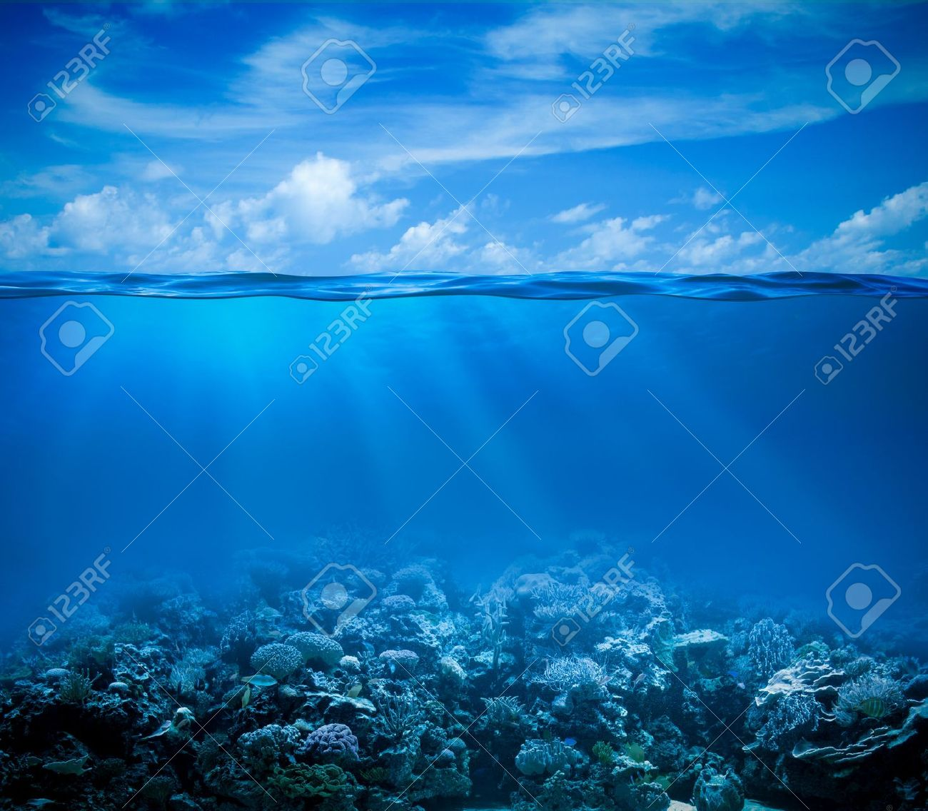 Underwater coral reef seabed view with horizon and water surface split by waterline - 16248932