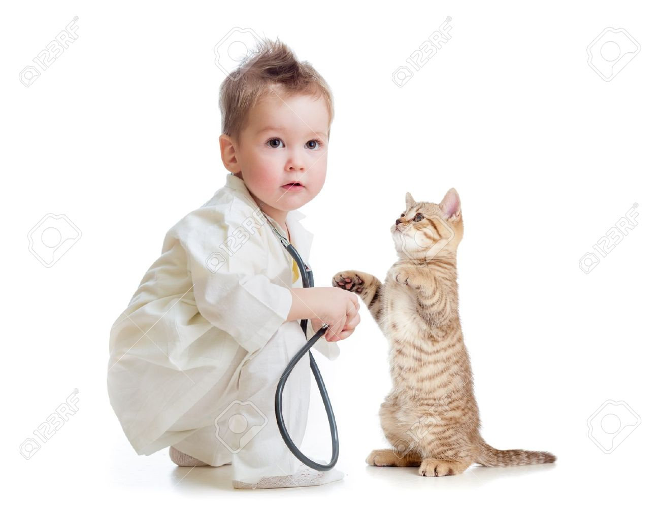 doctor kid kid or child playing doctor with stethoscope and cat isolated on white  Stock Photo - 16300897
