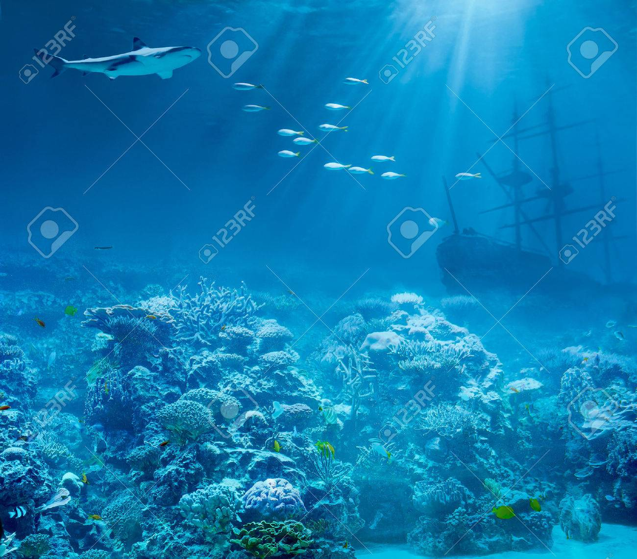 Sea or ocean underwater with shark and sunk treasures ship Stock Photo - 27676573