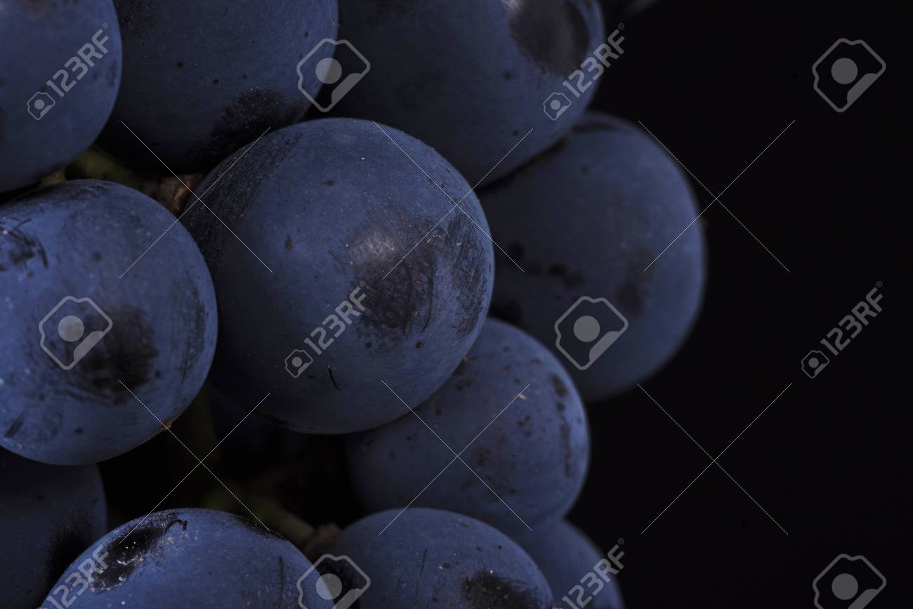 Close up, ripe dark grape berry isolated on black background Stock Photo - 73477038