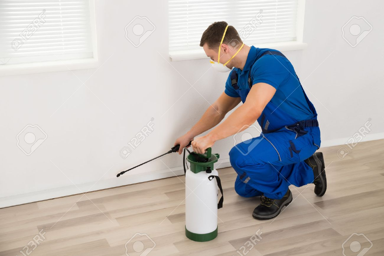 Side view of male worker spraying pesticide on wall at home - 51450353