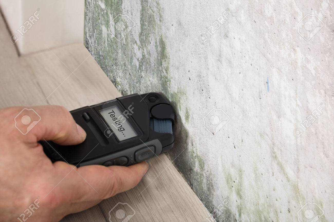Person Hand Measuring The Wetness Off A Moldy Wall Standard-Bild - 73171510