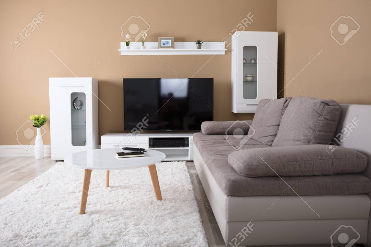 Modern Apartment With Television And Sofa In Living Room