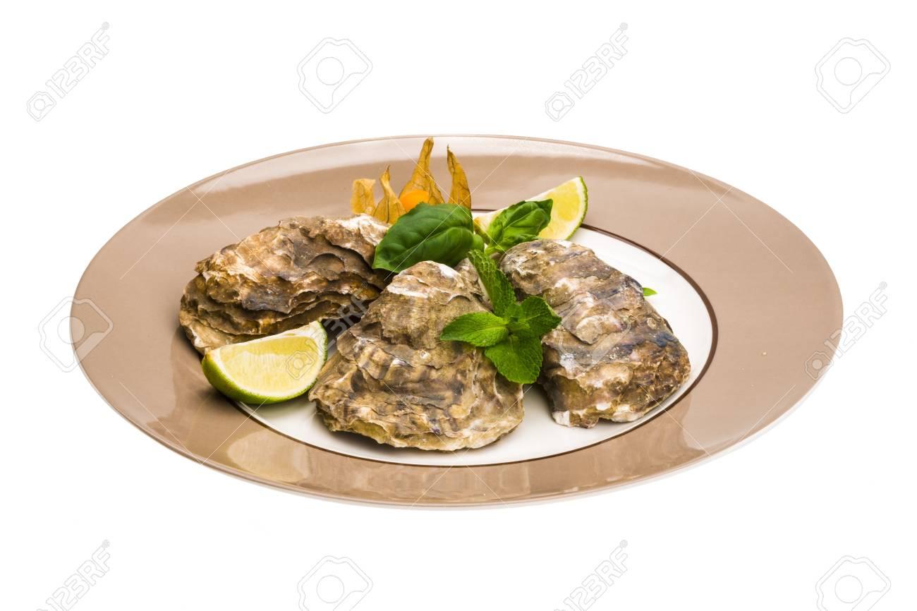 Fresh oyster Stock Photo - 19565597