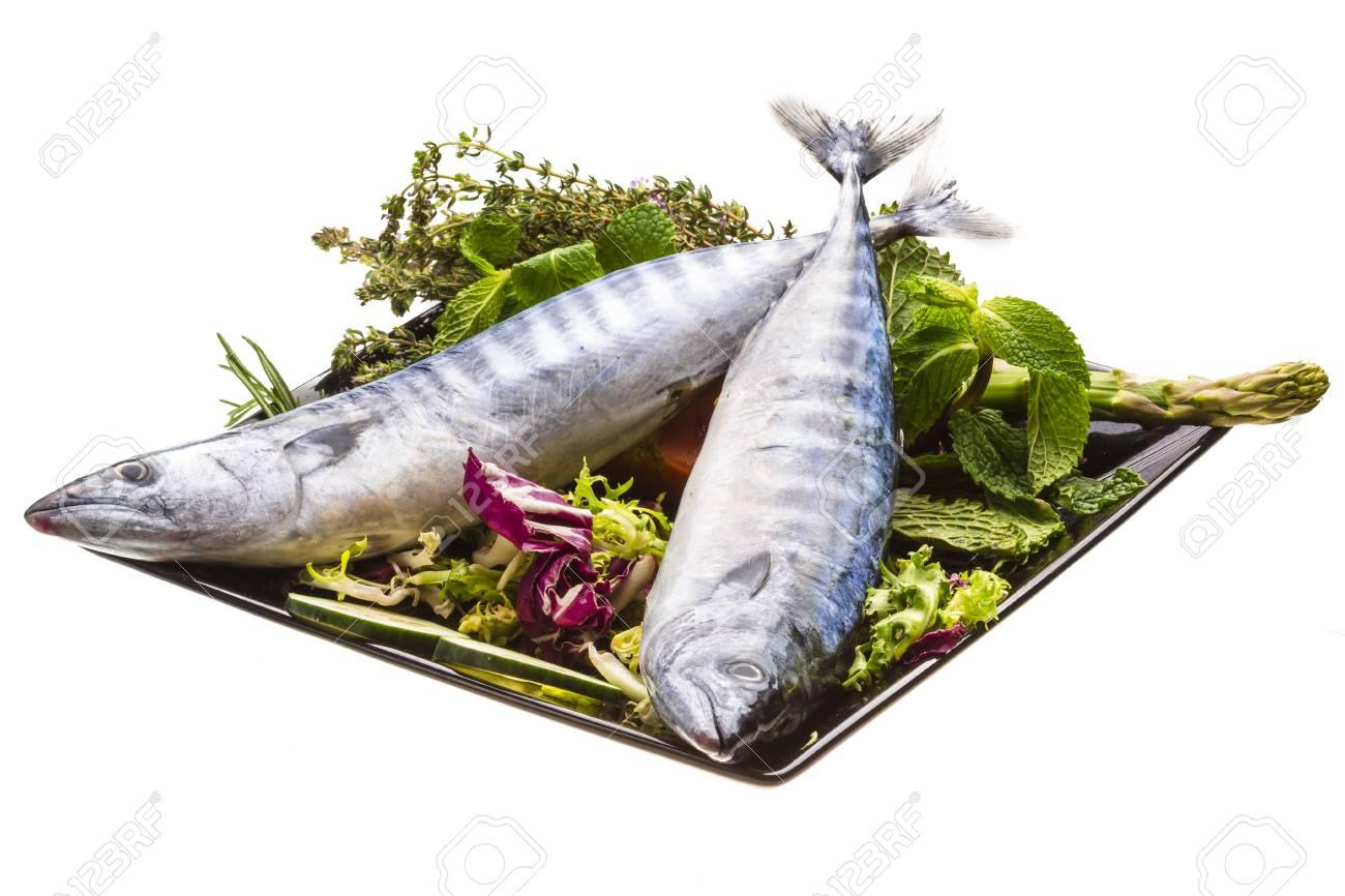 Fresh Atlantic mackerel Stock Photo - 19627379