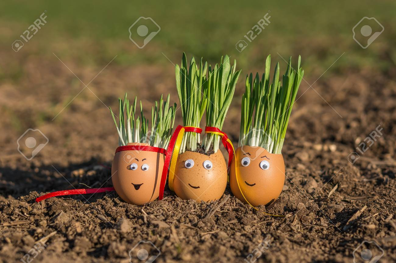 Happy egg family on the soil, Easter Stock Photo - 73494129
