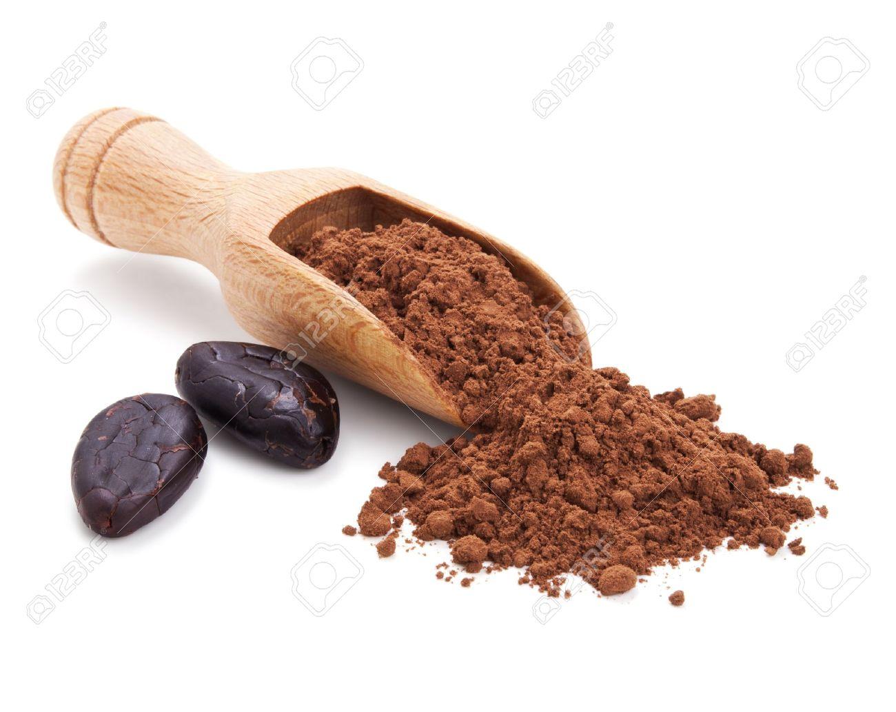 「カカオ豆写真フリー」の画像検索結果