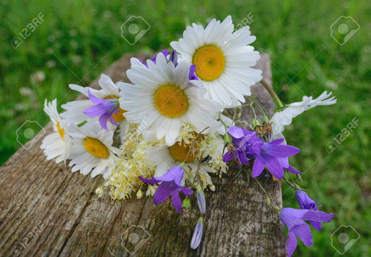 Beautiful bouquet of wild flowers daisies and bells on wooden beautiful bouquet of wild flowers daisies and bells on wooden bench stock photo 81055284 izmirmasajfo