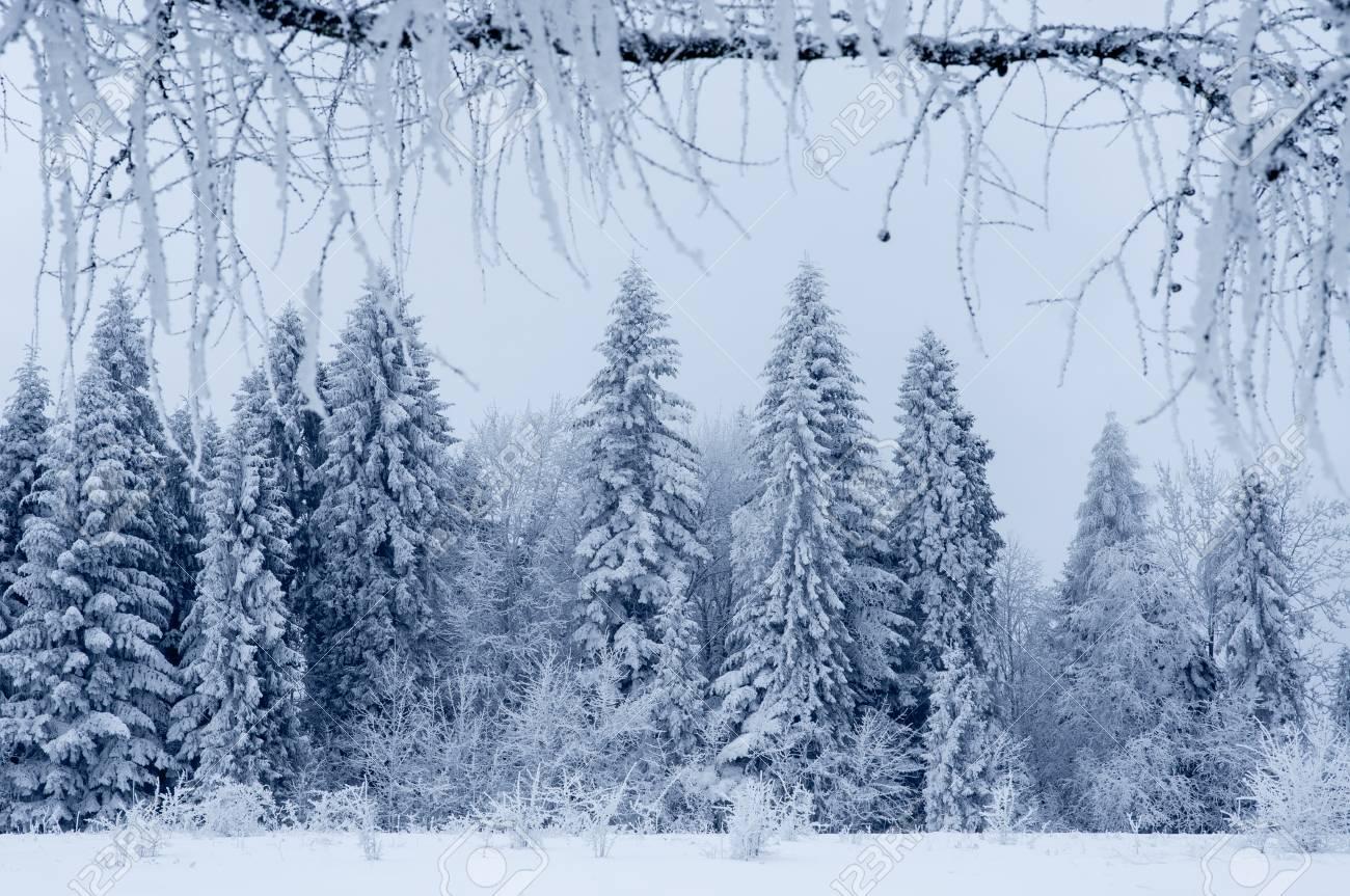Weihnachten Landschaft Lizenzfreie Fotos, Bilder Und Stock ...