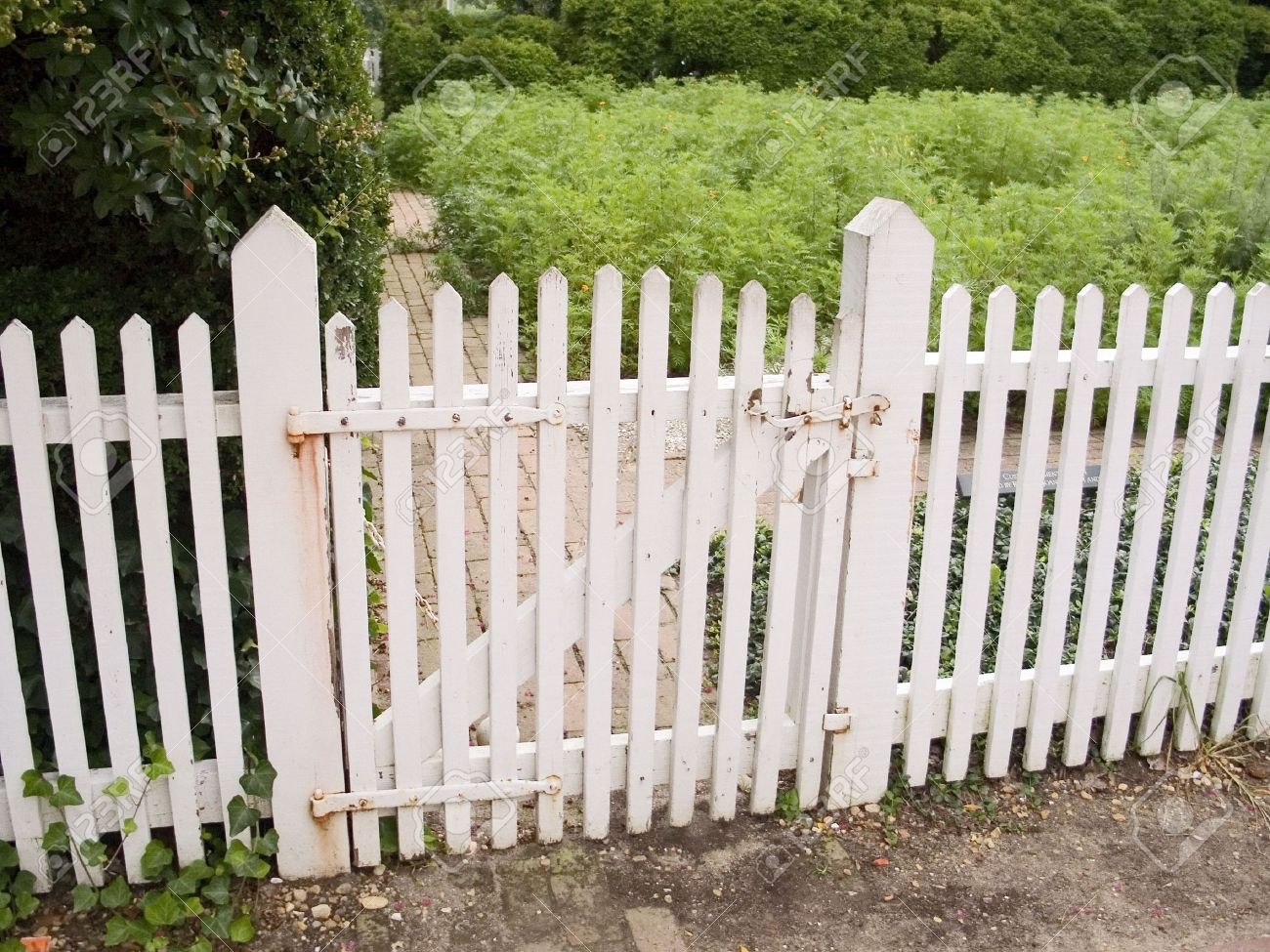 picket fence gate. an old white picket fence and garden gate stock photo 747165 t