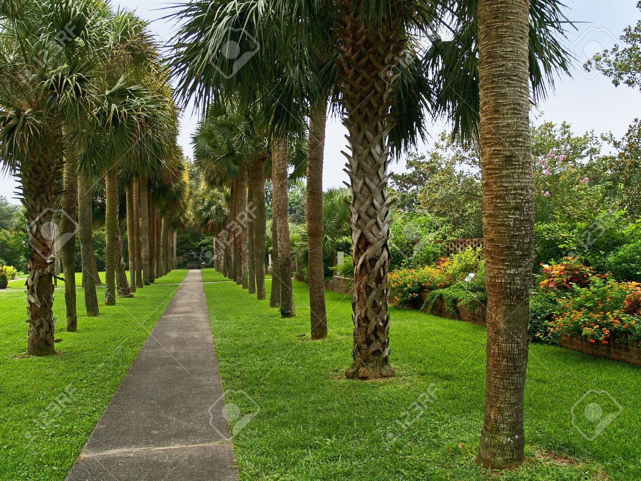 Botanical Gardens Myrtle Beach - purplebirdblog.com -