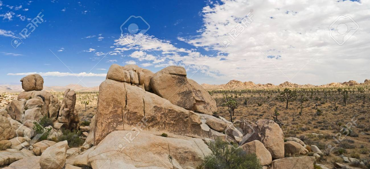A panoramic view of Joshua Tree National Park showing the interesting rock formations on the landscape. Stock Photo - 6280647