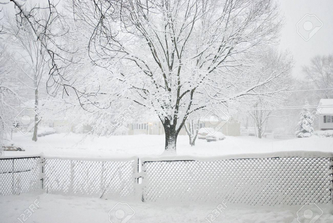 snow coming down and covering this backyard fence in central