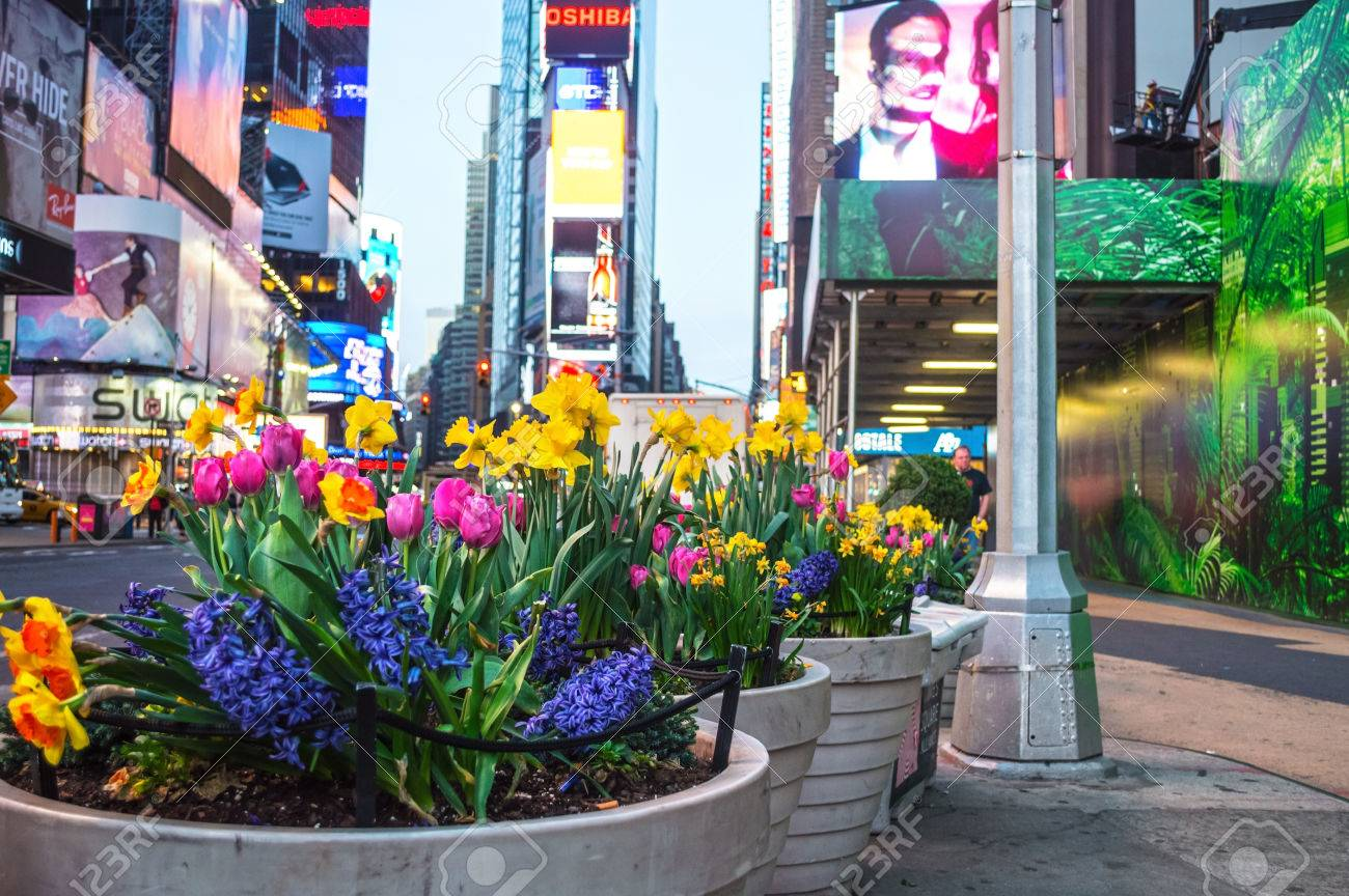 NEW YORK-APRIL 14 Spring Flowers Near The The Renovation Of ...