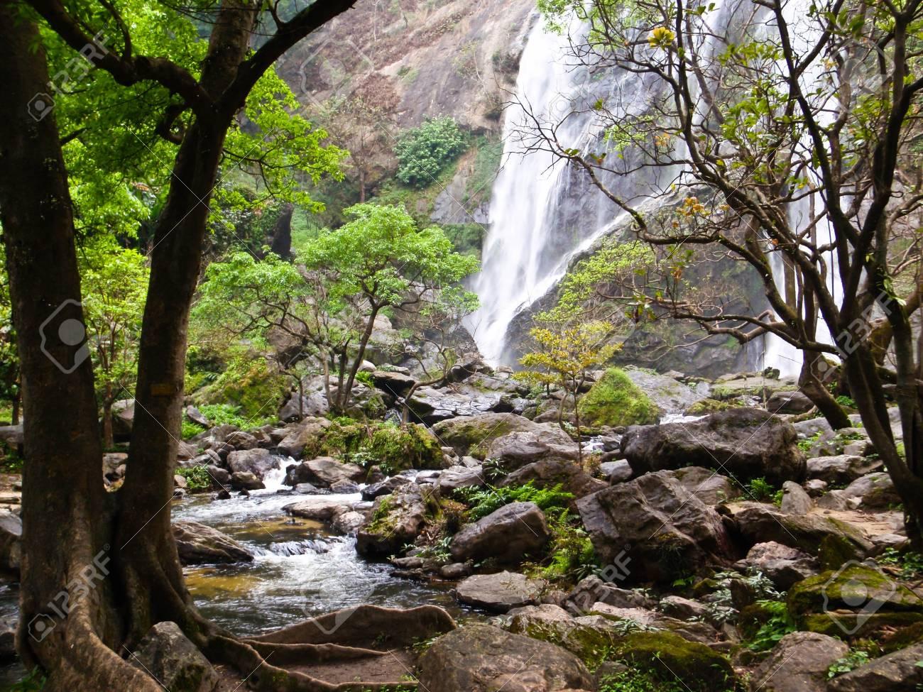 waterfall Stock Photo - 11978791