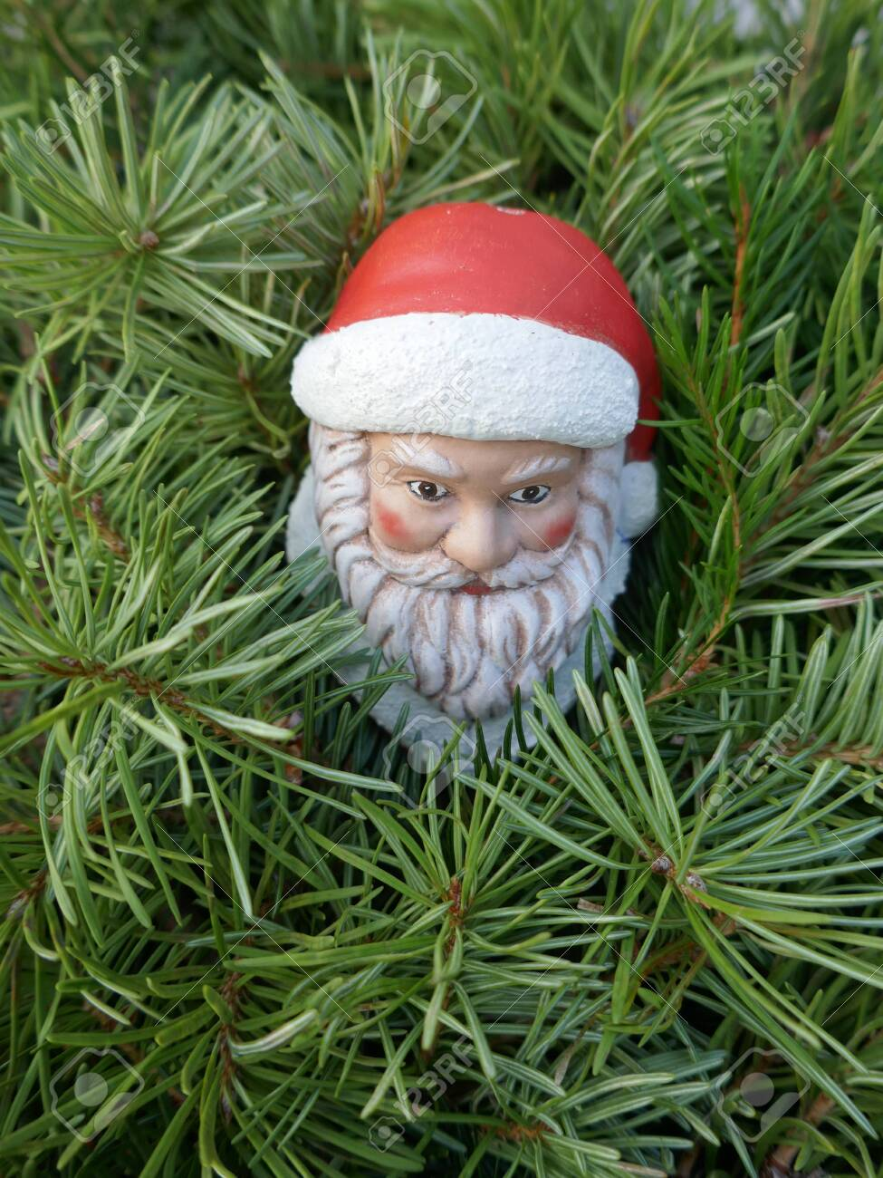 Santa Claus In The Woods A Little Gnome With Santa Hat Looks Stock Photo Picture And Royalty Free Image Image 130685921