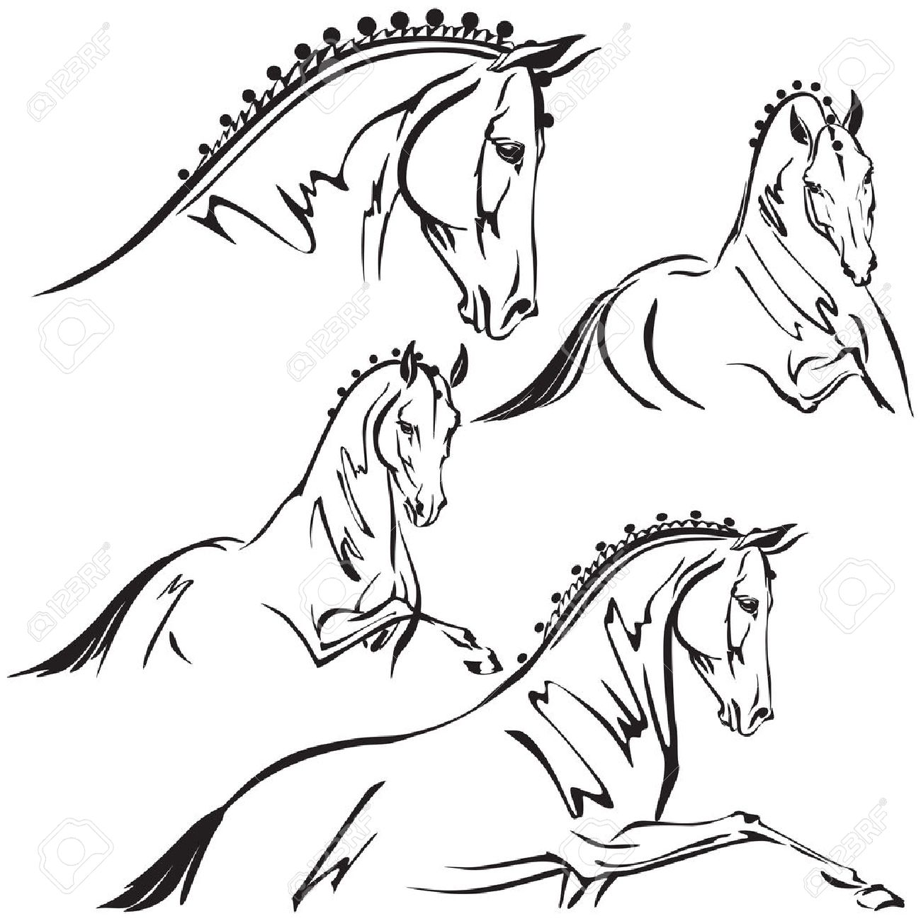 10,070 Horse Head Stock Vector Illustration And Royalty Free Horse ...