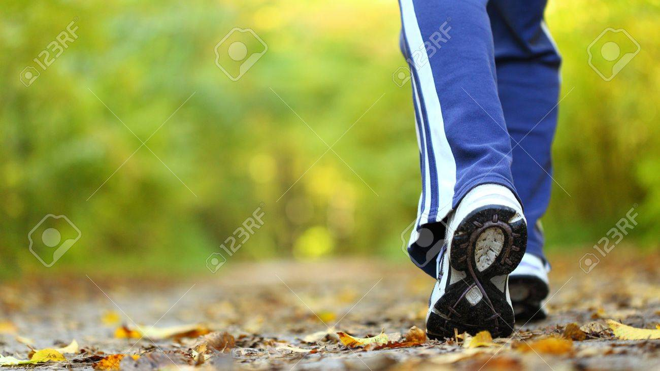Woman walking cross country and trail in autumn forest Stock Photo - 12246395
