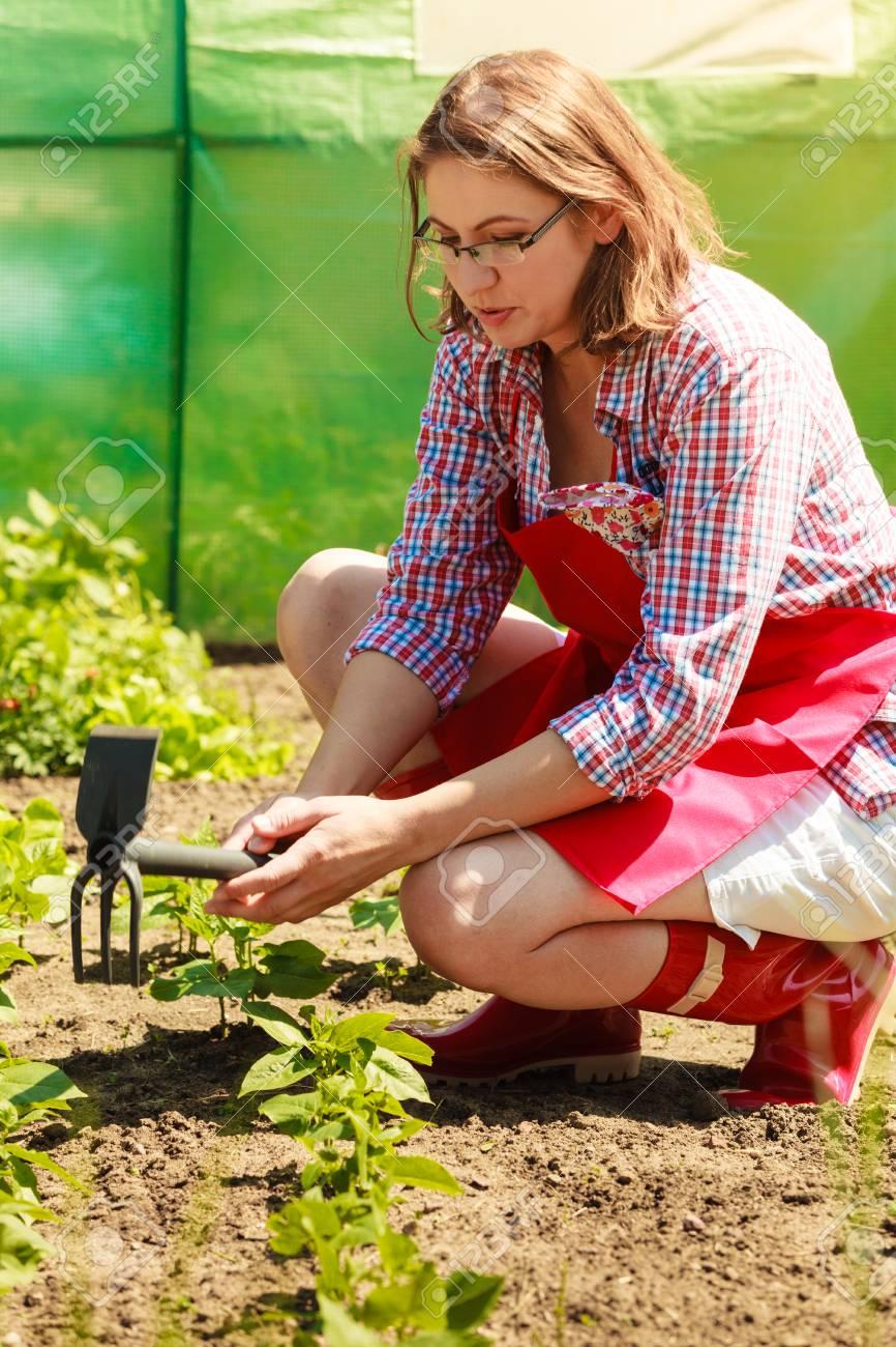 mature woman with gardening tool working in her backyard garden