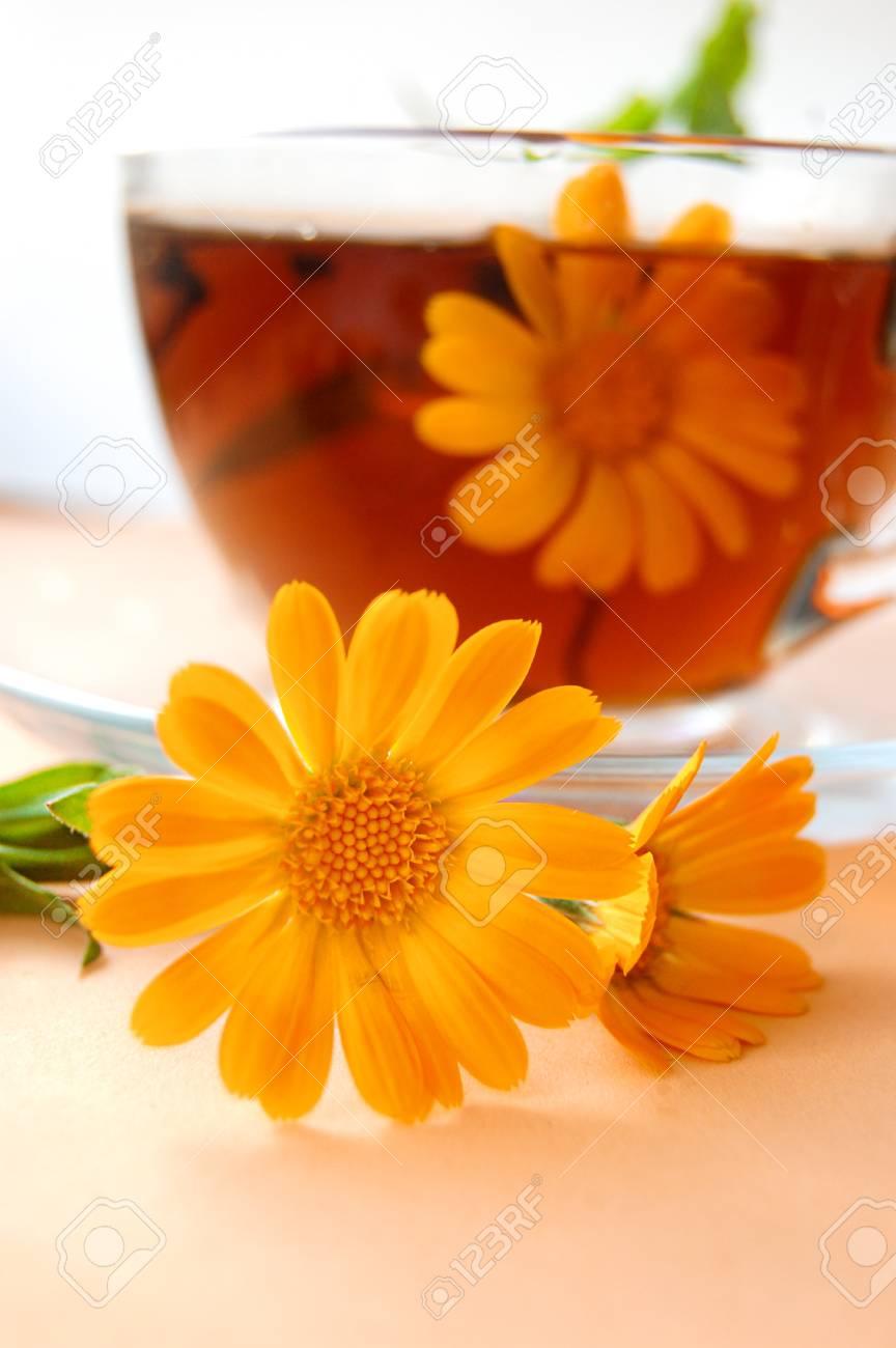 Curative tea with calendula on orange back Stock Photo - 12664518