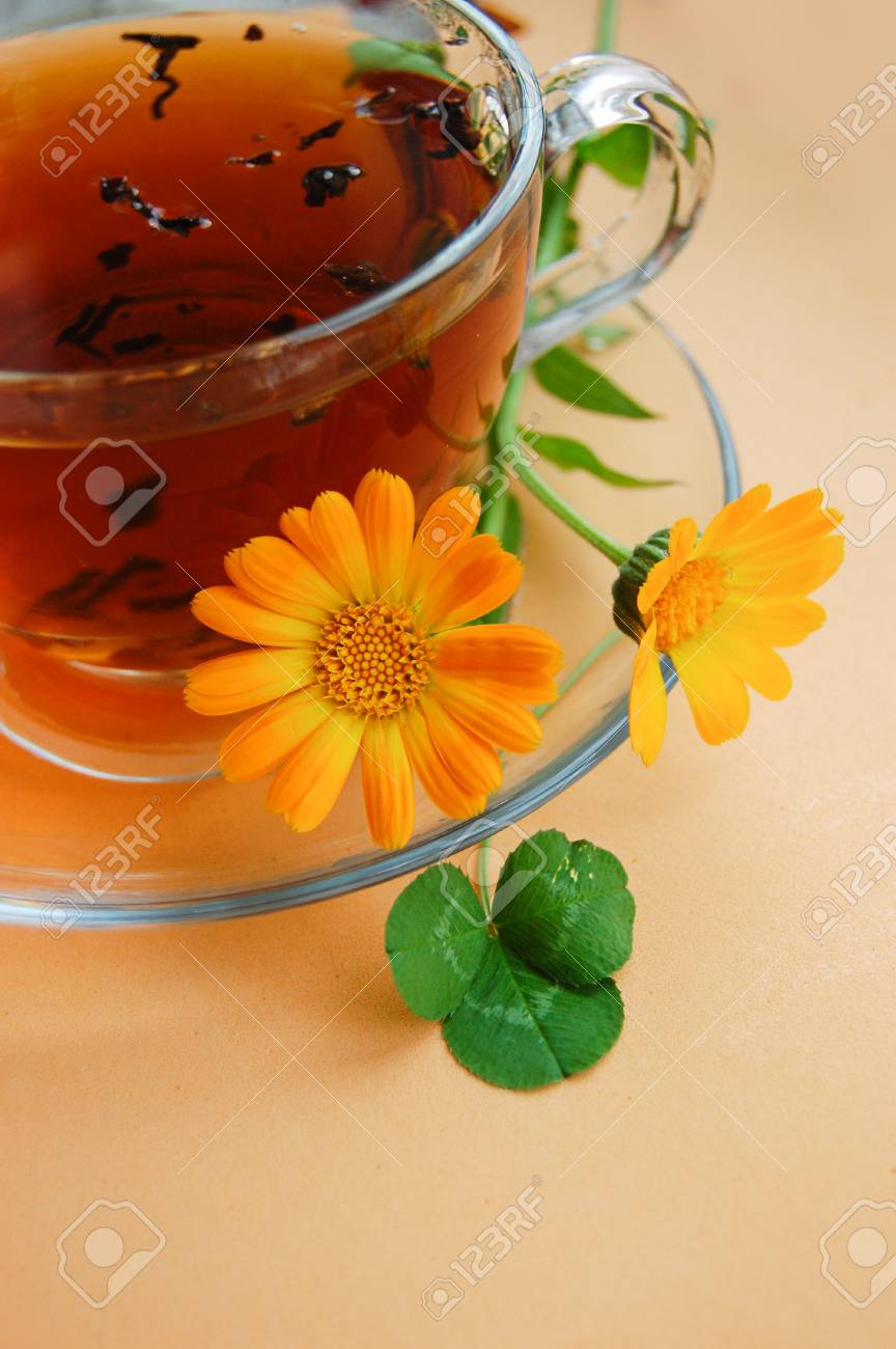 Curative tea with calendula flowers on orange background Stock Photo - 12664521