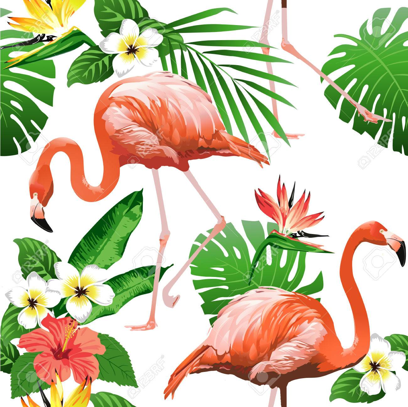 Flamingo Bird and Tropical Flowers Background - Seamless pattern vector - 81374671