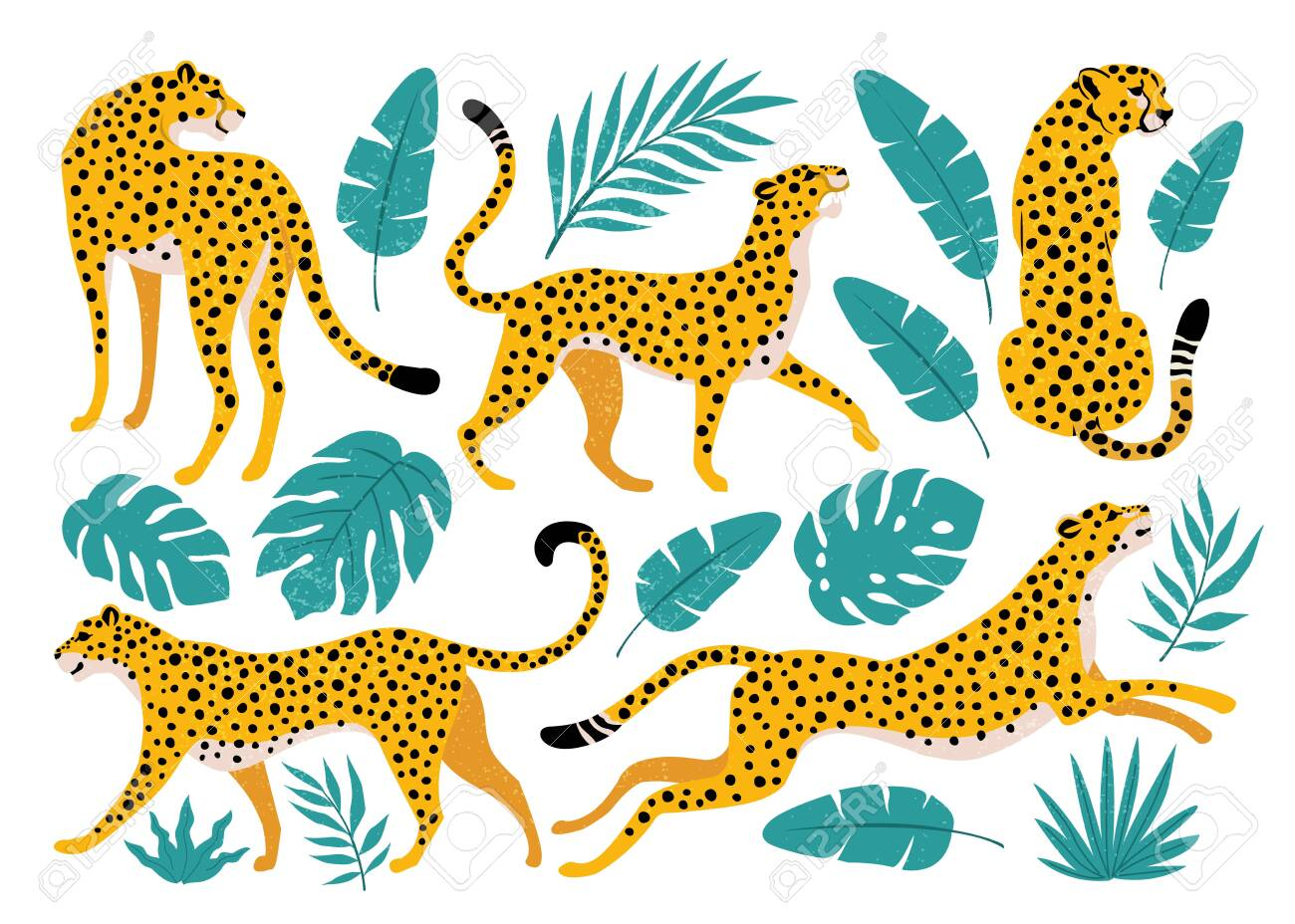 Vector set of leopards and tropical leaves. Trendy illustration. - 134337405