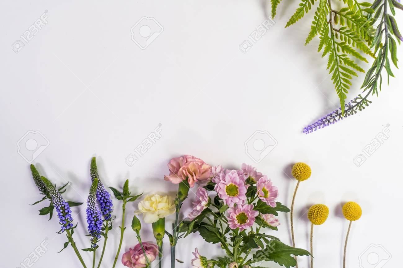 Multicolored flowers are lying. Composition from fresh flowers on a white background. - 94496297