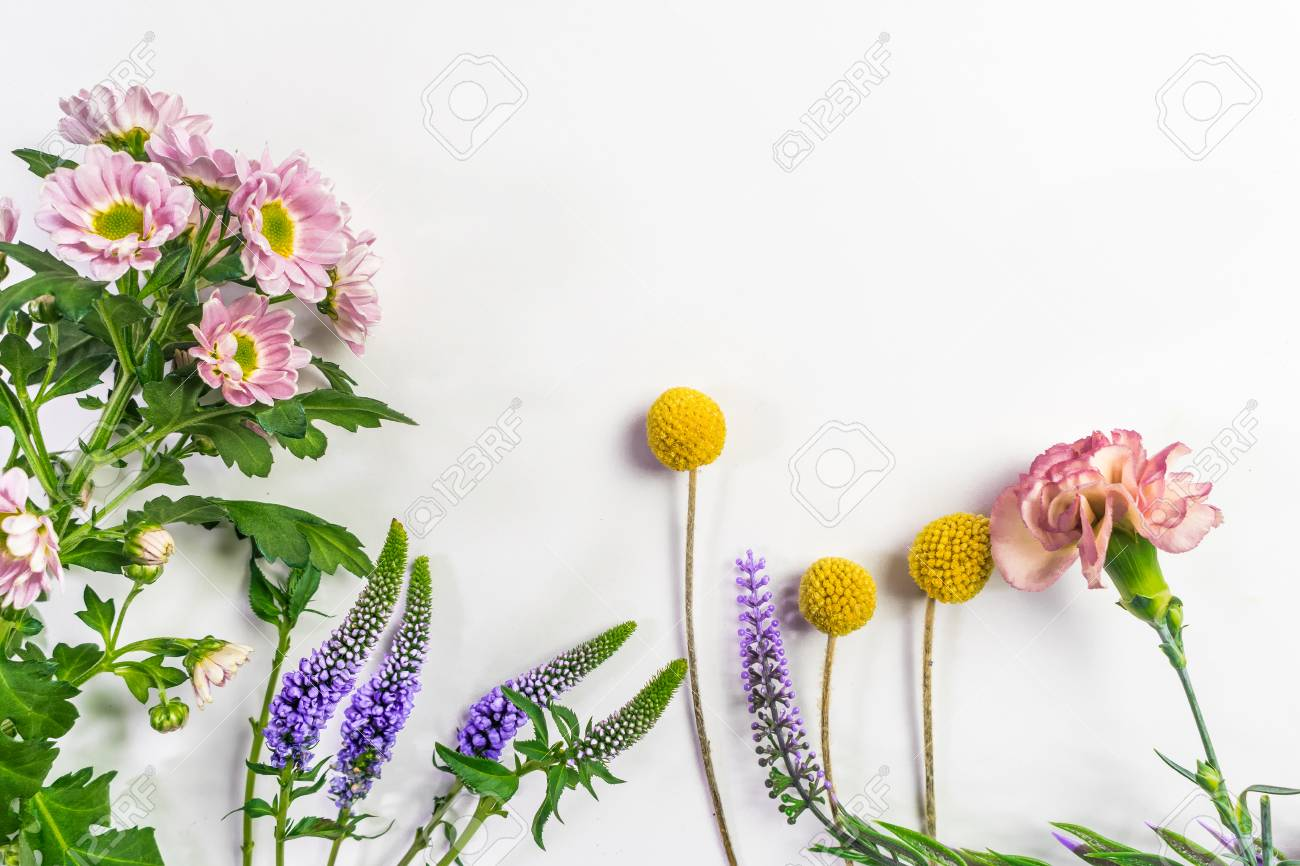 Multicolored flowers are lying. Composition from fresh flowers on a white background. - 94459331