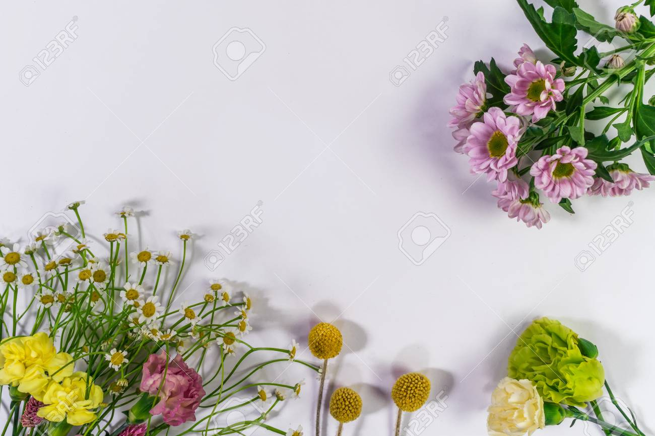 Multicolored flowers are lying. Composition from fresh flowers on a white background. - 94496301