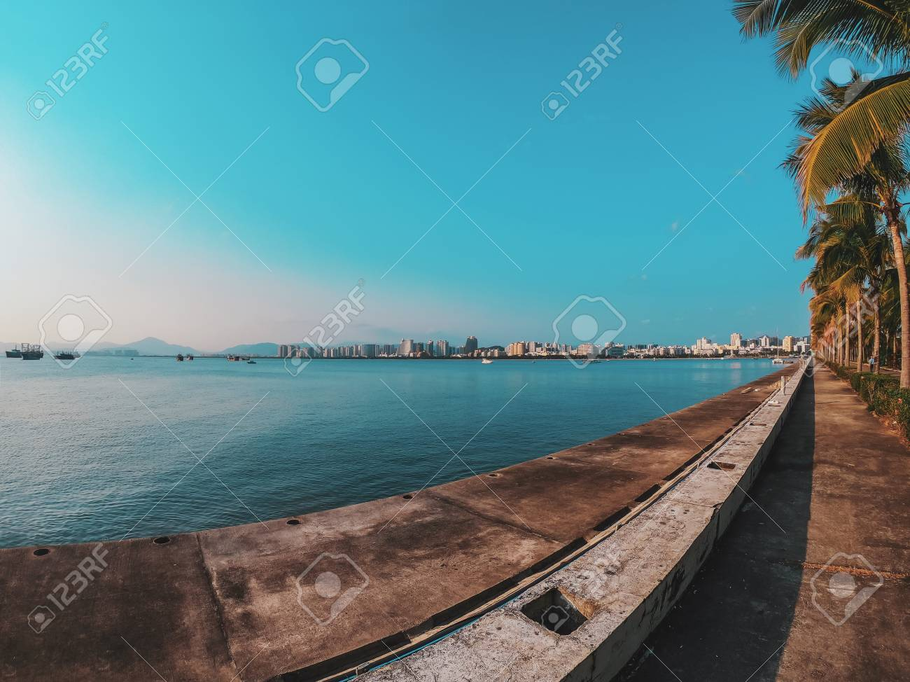 Nice asfalt road with palm trees against the blue sky and cloud. Palm trees grow along the road by the sea in China. Colorful image for the screen saver on the desktop. - 126731532