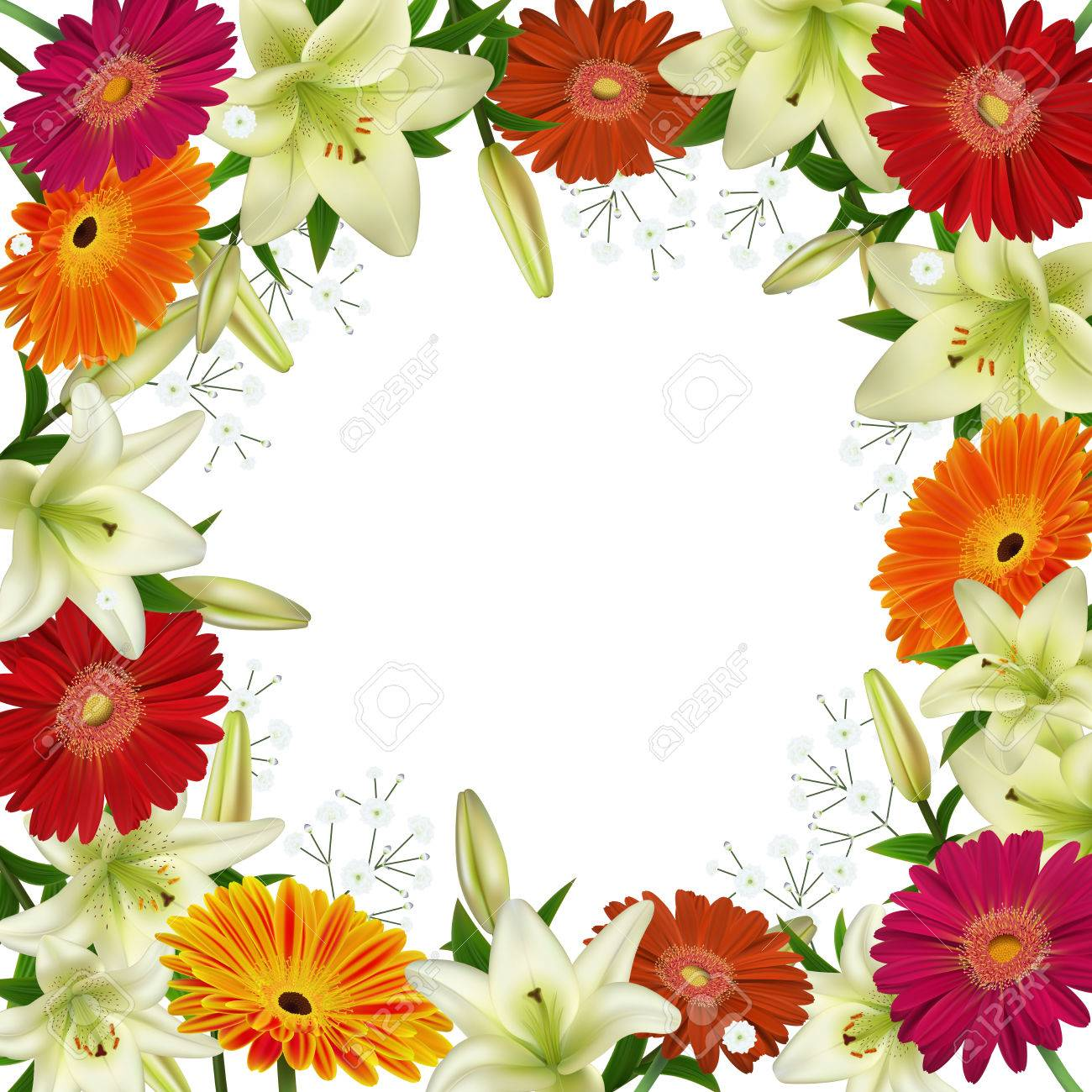 illustration of greeting or invitation card template with lily