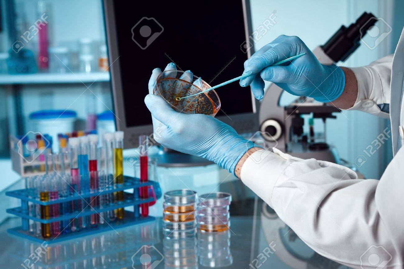 A scientist holding a petri dish in the lab with a monitor and microscope in background - 20271236