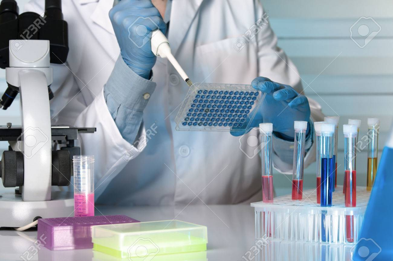 Scientist in the lab holding a 96 well plate with samples for analysis / researcher pipetting samples in microplates in the laboratory - 60174458