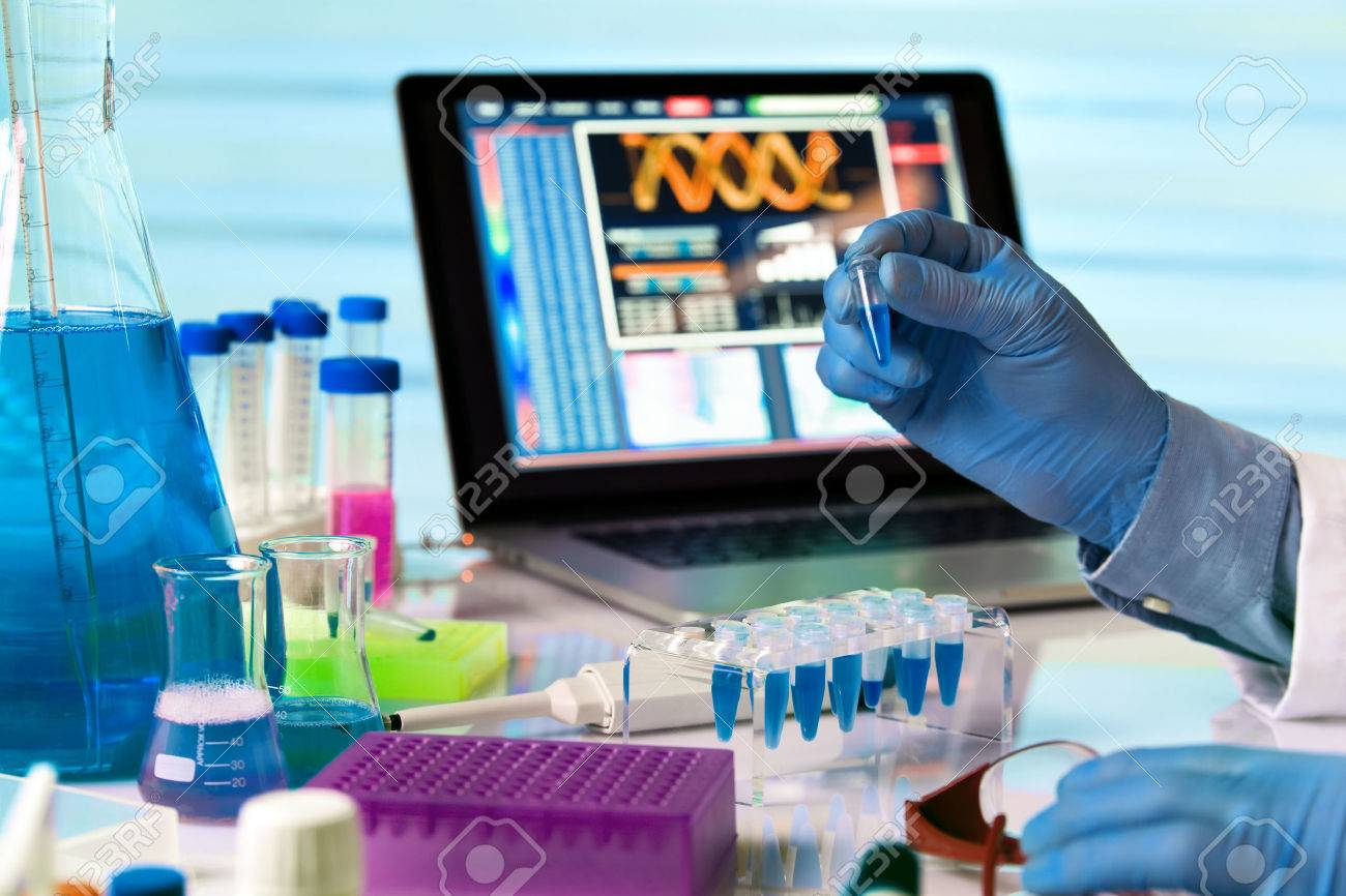 scientist holding tube and working with laptop in genetics lab / engineer genetic working in laboratory - 59194947