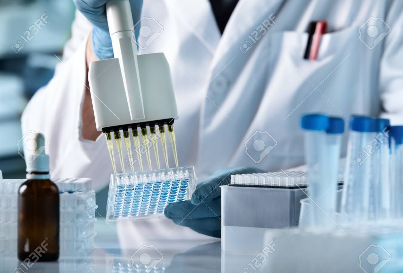 hands of scientist working with multichannel pipette and multi well plates / research technician with multipipette in genetic laboratory - 109284497