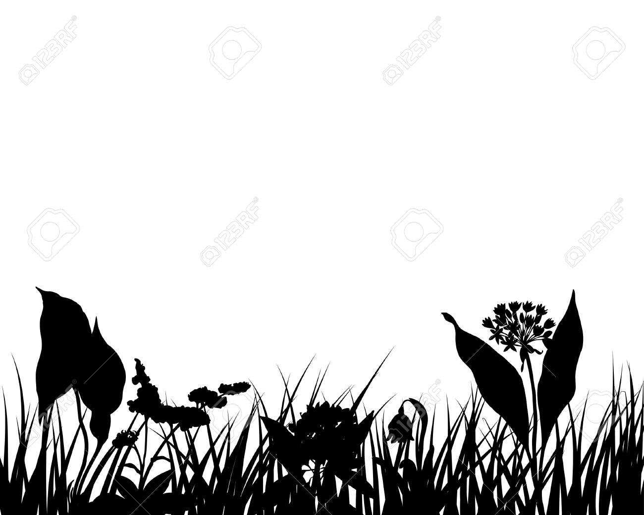 Grass silhouettes ornate on the white background Stock Vector - 3858628