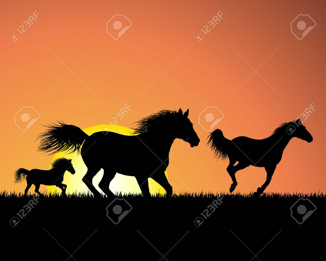Horse Silhouette Horse Silhouette on Sunset