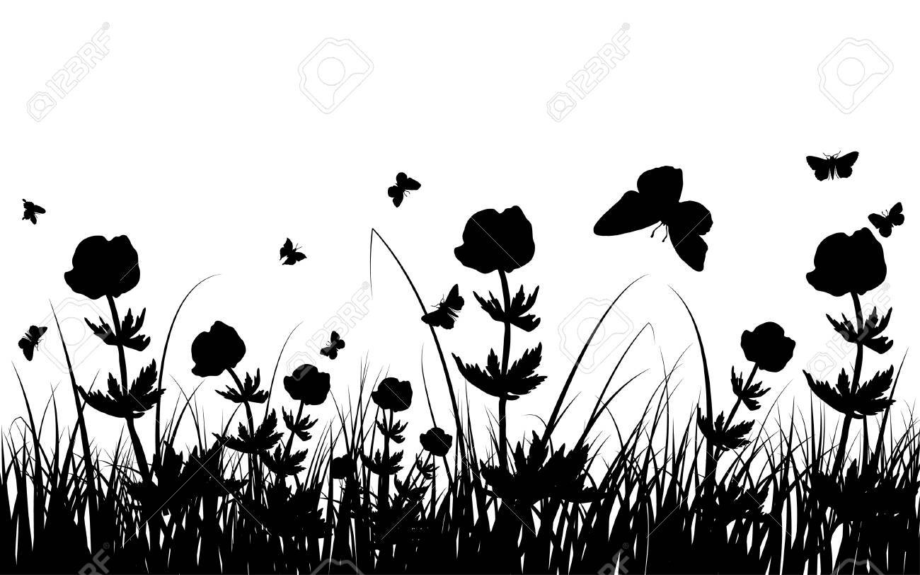 Vector grass silhouettes background. All objects are separated. Stock Vector - 5310452
