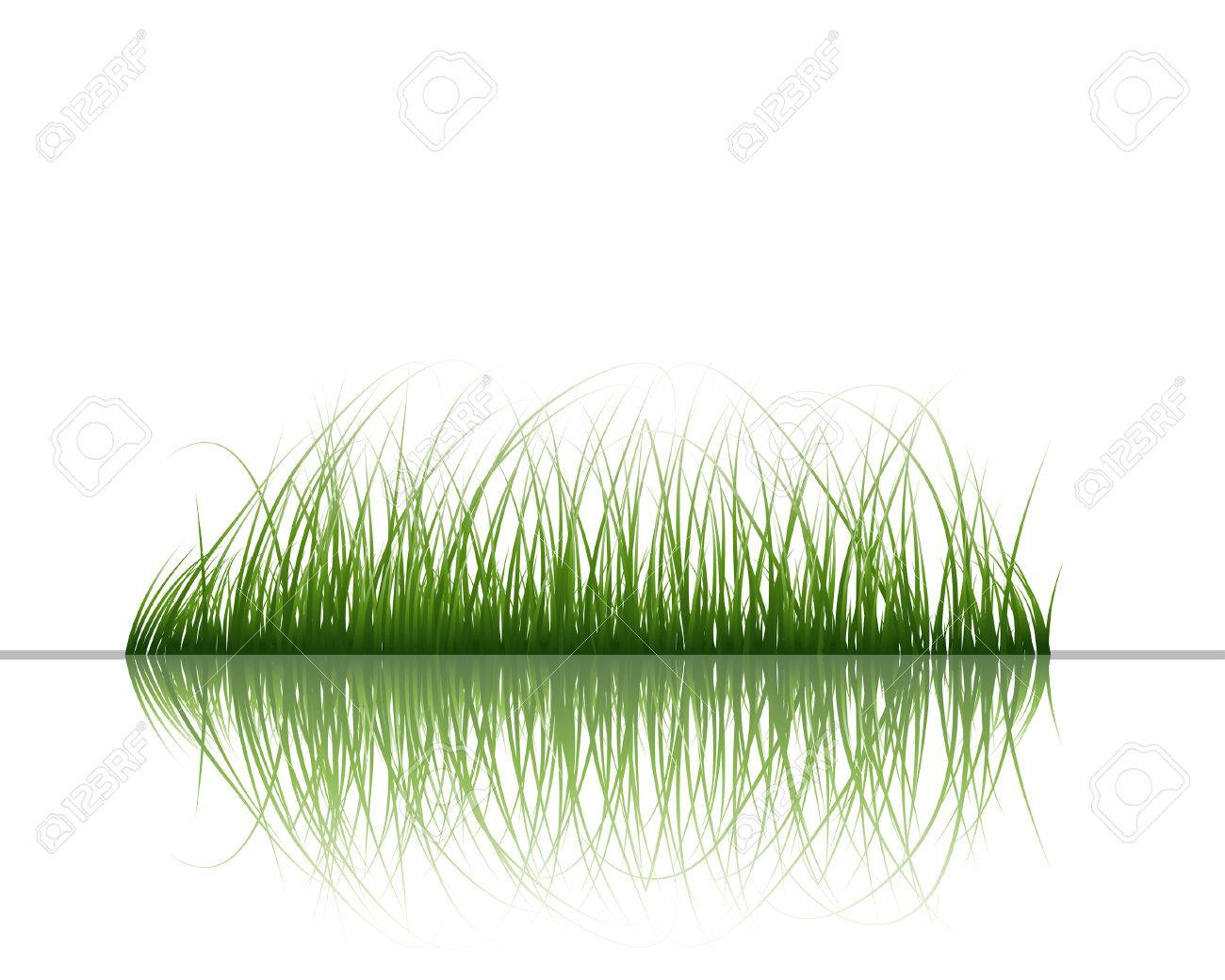 Vector grass silhouettes background with reflection in water. All objects are separated. Stock Vector - 5560043