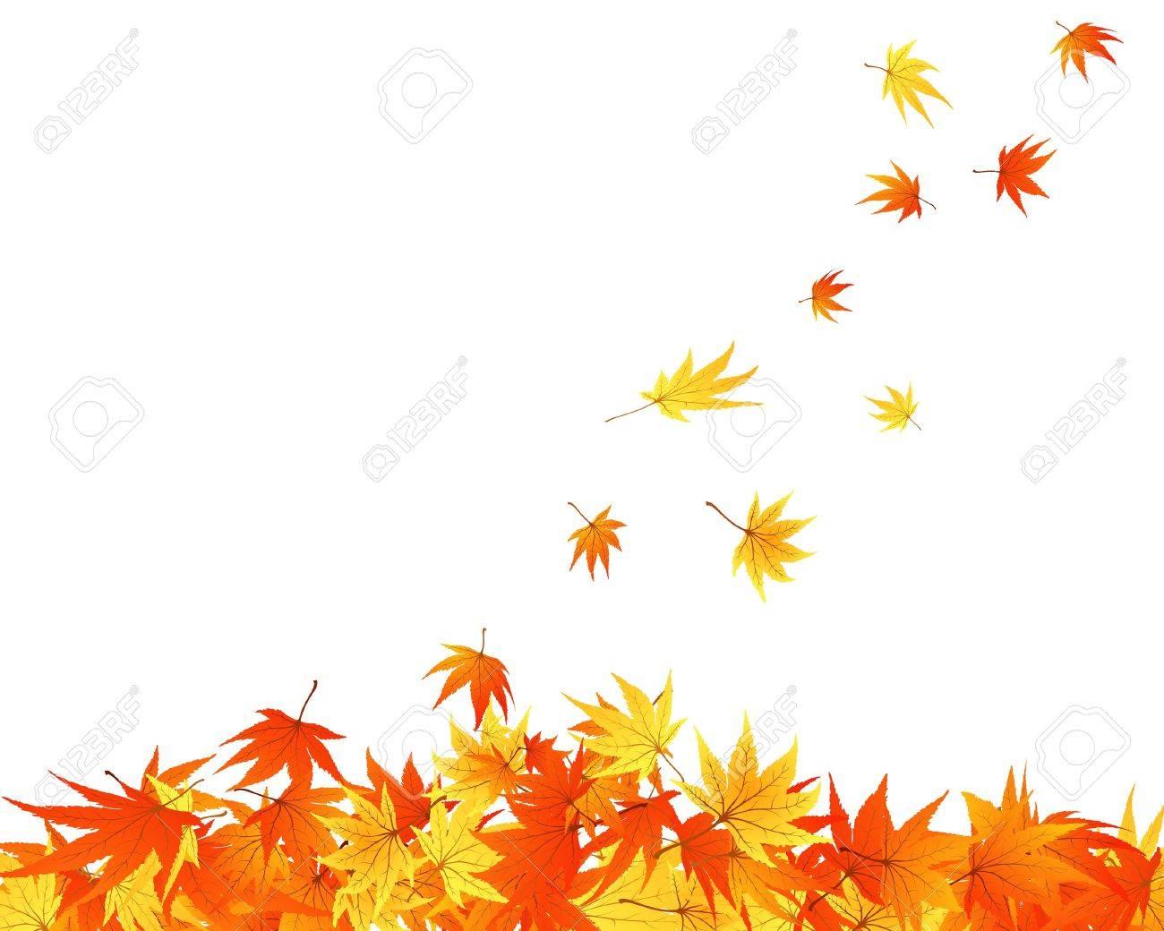 Pattern of autumn  maples leaves.  illustration. Stock Vector - 7685225